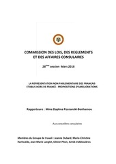 rapport commission des lois