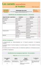 bois agents degradation carnets nat d raymond 2006 2018