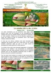 02 18 maladie foliaires des cereales 29 mars