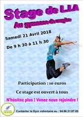 affiche gym stage lia 21 avril 2018 6 003