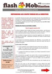 Fichier PDF flash mob 3 v2