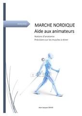 marche nordique notions d anatomie adducteurs