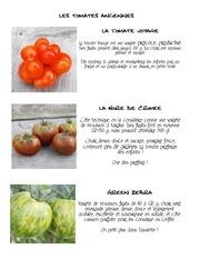 Fichier PDF fiche tomates