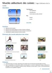 Fichier PDF muscles adducteurs des cuisses