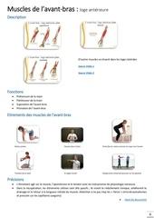 muscles de l avant bras