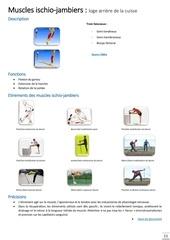 Fichier PDF muscles ischio jambiers