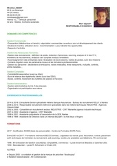 Fichier PDF cv milassey resp