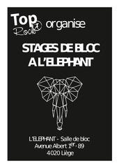 carnet des stages elephant