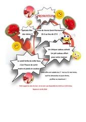 Fichier PDF promotion 1