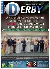 derby n 353