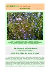campanula rotundifolia routes carnets d raymond 2018