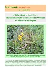 ophrys lutea menace riberacois carnets nat d raymond 2018