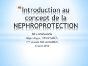 Fichier PDF drbenghanemintronephroprotectionfmcngaous2018
