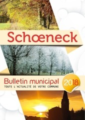 schoeneck mg 18   bat2 1