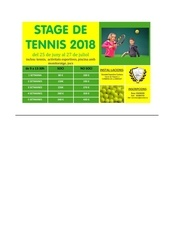pubinscripcio stage tennis estiu 2018