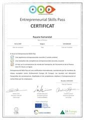 entrepreneurial skill pass   rayane kamandali