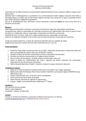 Fichier PDF assistante commercial export   activinside 2018