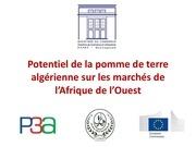 Fichier PDF potentiel du marche africain