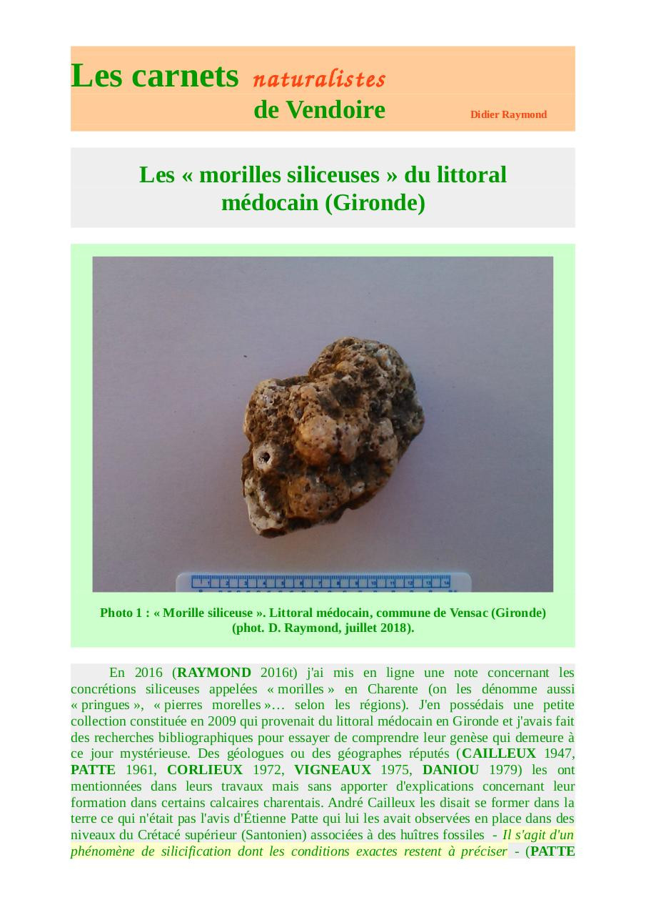 morilles-siliceuses-littoral-médoc-carnets-d-raymond-2018.pdf - page 1/16