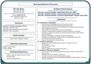 Fichier PDF cvdeniznouveau201611