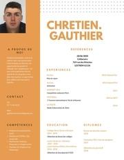 Fichier PDF cv20