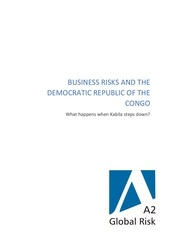 business risks and the drc   what happens when kabila steps down 1