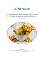 Fichier PDF memoire depression melanie auber 1