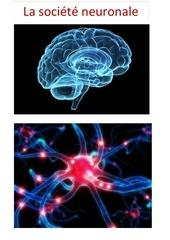 Fichier PDF la societe neuronale 07112017