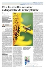disparition abeilles