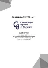 bilan dactivite 2017