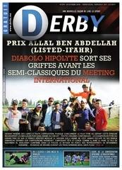 derby n379