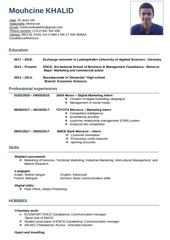 Fichier PDF mouhcines cv