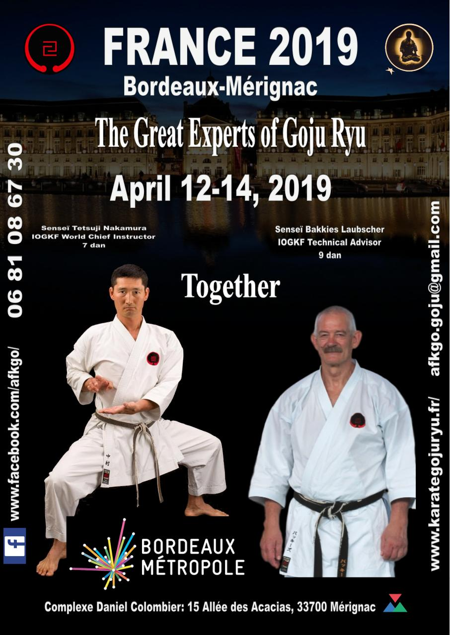 France 2019-Bordeaux-Mérignac-The great experts of gojuryu.pdf - page 1/6