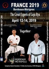 france 2019 bordeaux merignac the great experts of gojuryu