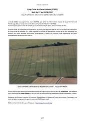 Fichier PDF 18 crop circle de vieux lixheim