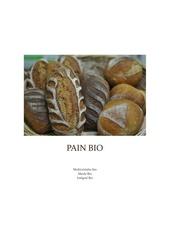Fichier PDF pain bio detail