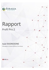 rapport du profil pro 2 de ayari badreddine