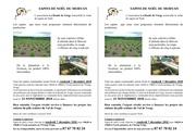 Fichier PDF sapins de noel communes 2018
