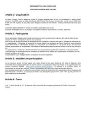 Fichier PDF 181203immochanreglement concours facebook noel caluire