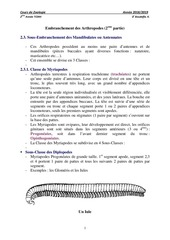Fichier PDF 2eme partie arthropodes