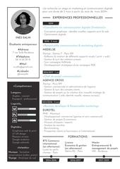 Fichier PDF cv   ines salhi 2