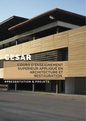 presentation projets cesar et workshop