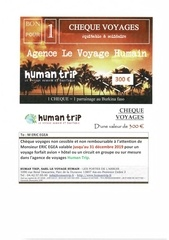 cheque voyage