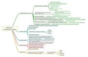 Fichier PDF bordures    interfaces  limites 1