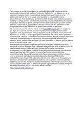Fichier PDF guvenlik kameras