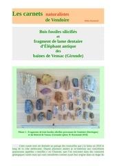 bois fossiles vensac gironde carnets nat d raymond 2019