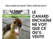 Fichier PDF ce canard a bienchangember111