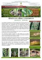 02 19bulletin oidium des cereales n02 fevrier 2019