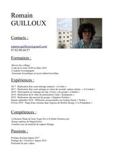 Fichier PDF cv1 2