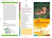 becasse des bois2008